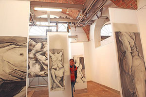 Installation aux Abattoirs d'Avallon (89), novembre 2012