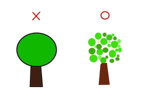シマトネリコ 樹形