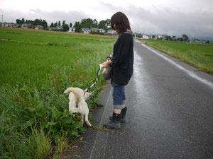 初めてのお散歩♪のとき。
