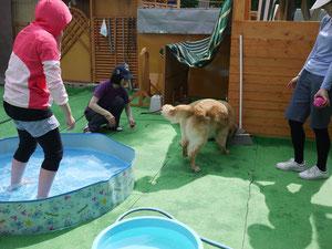 暑いからプールで遊ぼうか!!!