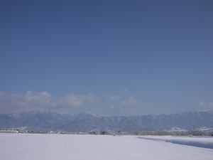 いや~でもすごい雪。