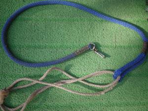 リードとロープ。
