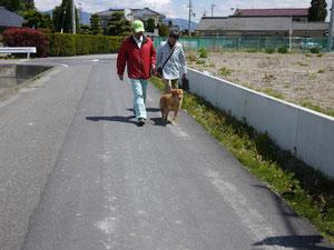 お散歩…そんなに行きたくないです~♪ぷぷぷ