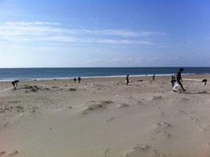 beach clean