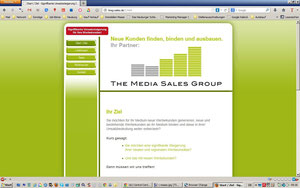 The Sales Media Group