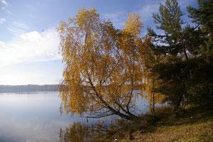 Erholungsgebiet am Murner See