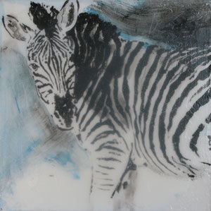 Zebra.Acryl.Leinwand.20x20cm