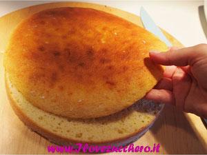 torte ricette