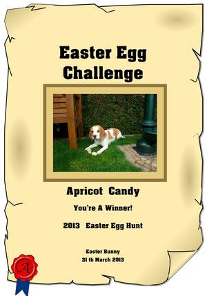 Certifikat Easter Egg Challenge  2013 !
