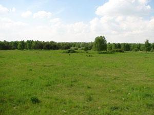 ehemaliger Truppenübungsplatz Trampe
