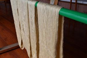 糊つけした糸を乾かします