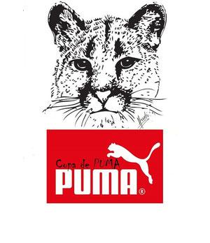 Copa de Puma