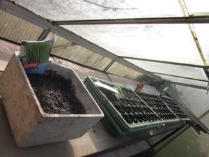 und im Treibhaus sind die Rüebli und der Salat gesäät.