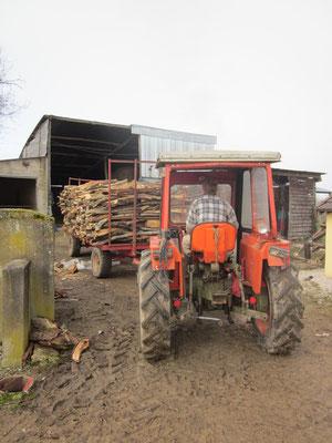 Das Brennholz für nächsten Winter wird ins trockene gefahren.