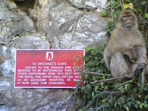 """""""Portier"""" bij St. Michael´s Cave"""