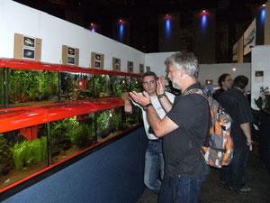 Zierfische & Aquarium 2011 in Duisburg