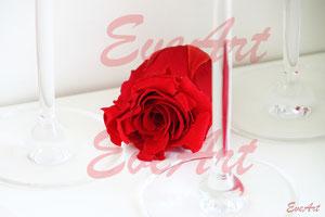 Rose und Glas auf dem Tisch