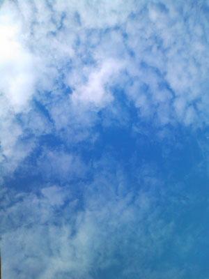 事務所から見上げた空