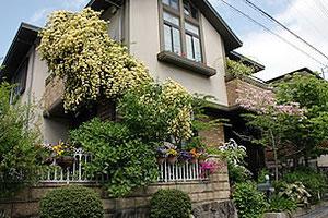 粟生外院4丁目  モッコウバラと花ミズキが 爽やかな初夏のお庭
