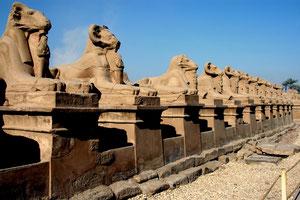 Sfinx Allee in Karnak