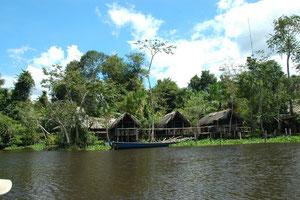Unser Dschungel Camp