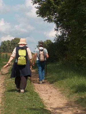 Tant que les chemins ont encore une vocation agricole, ils sont maintenus et à peu près en état. Mais quel avenir pour les autres ?
