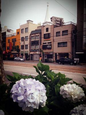 ☆紫陽花越しに見えるBTU長崎駅前と中町教会