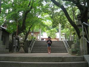 門司区戸ノ上神社で孫のスズナです。