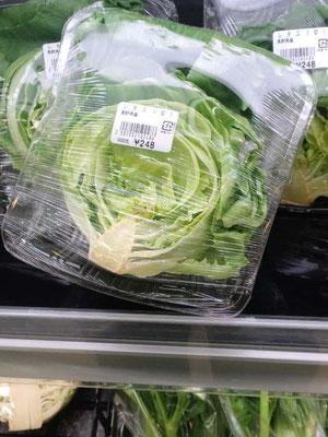 最近の野菜価格