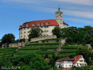 Auf dem Vaihinger Hausberg befindet sich Schloss Kaltenstein ...