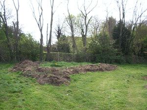 mars-avril 2010 le tas de compost