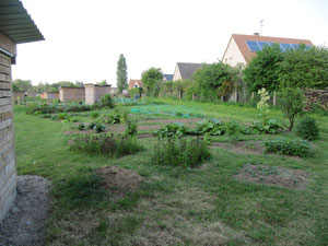 avril 2011   milieu du jardin