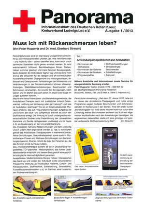 Bericht Deutsches Rotes Kreuz - Januar 2013