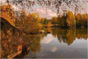 Herbst in der Blockheide