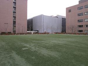 関西大学に柵を作りにいきました。2012年3月