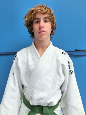 Felix Binder, Ehrenpreise, Wettkampferfolge, 2. Platz Schulrangliste 2011-2012, Sportler des Jahres 2012/2013