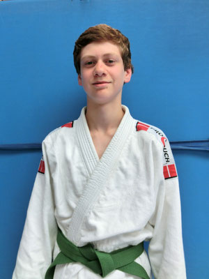 Benjamin Fink, Ehrenpreise, Schülermentor Judo, Wettkampferfolge, Sportler des Jahres 2011-2012