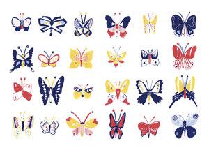 蝶と蛾です。