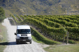 Queenstown Wine Trail