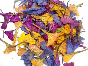 Blüten getrocknet