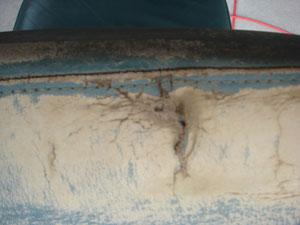 クリーニング工程を終わらせ表皮を整えての画像です。破れアップ