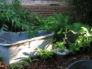 Préfiguration jardin d'eau hors sol