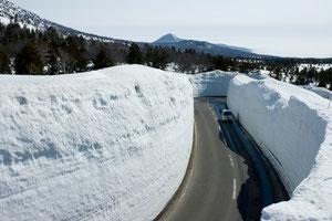 雪の回廊はこのとおり