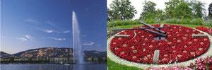 Le jet d'eau de Genève et l'horloge fleurie