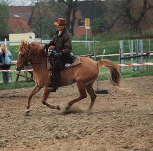 Gessi, Hagenburg 1991