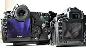 Canon EOS 5D vs EOS 5D mark II