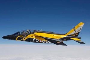 Alphajet Spécial 1 millions d'heures de vol (Tator, 2008)