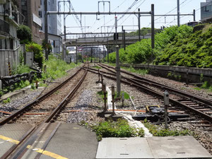 原宿駅方面を望む