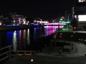 2012/4/2 撮影