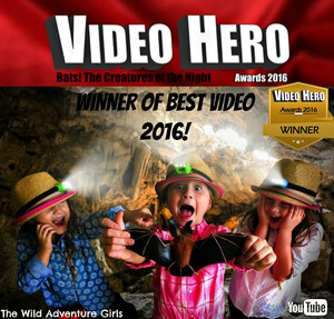 Video Hero Winner, Bats The Creatures of the Night